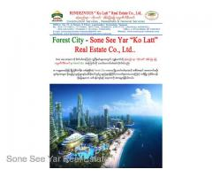 (SV 16-00814) , Between Malaysia and Singapore, Forest City