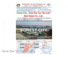 (SGV 16-00820) , Between Malaysia and Singapore, Forest City