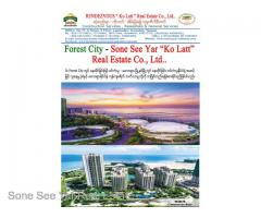 (SGV 16-00821) , Between Malaysia and Singapore, Forest City