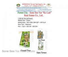 (SGV 16-00822) , Between Malaysia and Singapore, Forest City