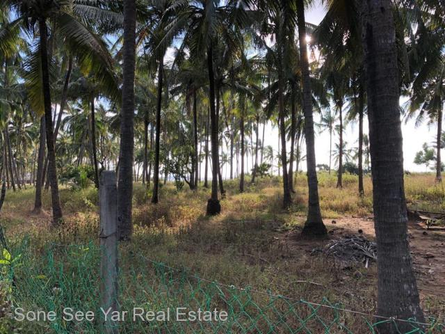 Beside Yachet Land, (SL23-001348) For Sale Land in Pathein Township,