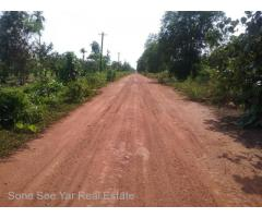 Sale Nyaunghnapin, Special Zone (1) of vegetable and fishery breeding farm, Hmawbi Township