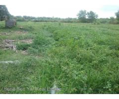 Nyaunghnapin, Special Zone (1) of Vegetable And Fishery Breeding Farm, Hlegu Township